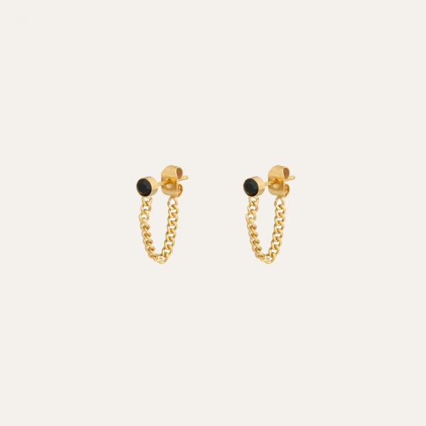 stainless steel oorbellen goud
